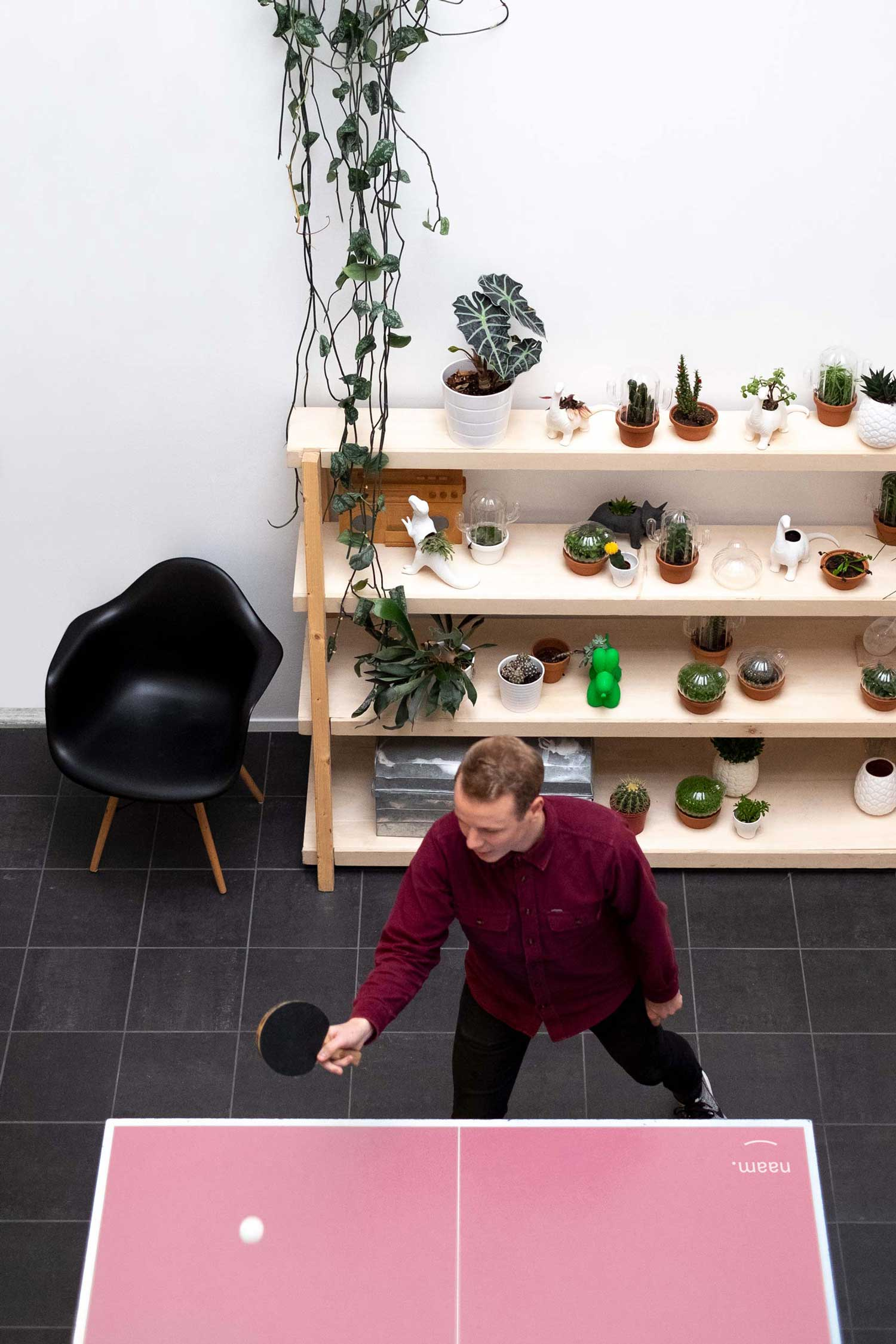 Playing ping pong on a pink table and a beautiful shelve with cacti and Eames chair at the Naam office